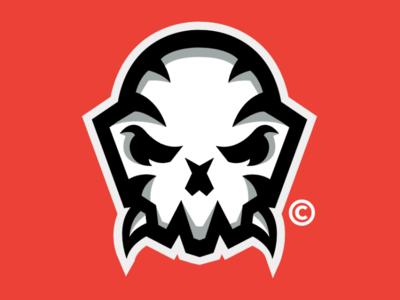SKULL // DESIGN identity illustration icon graphic design flat esports design clean branding brand blue art