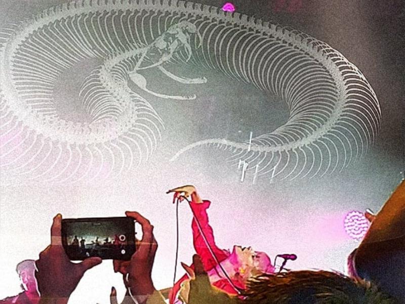 Charmer dark darkroom photojournalism photographer concert paramore