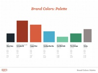 Defy Brand Guide: Colors