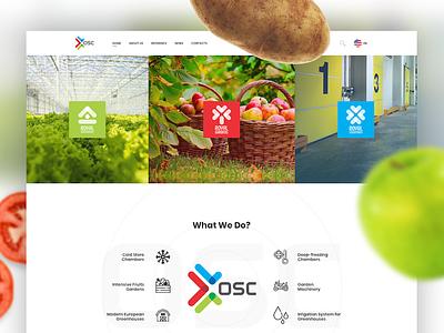 Website for OSC agriculture flat clean coldstore greenhouse garden fruit food osc agro web