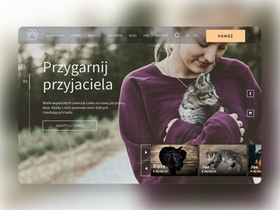 Animal shelter website concept
