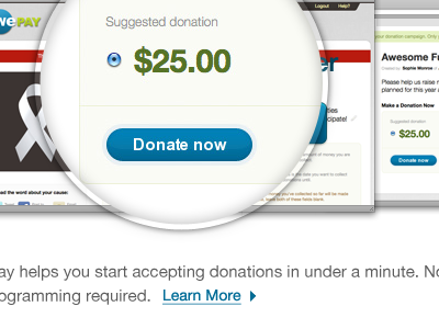 Donate Now donations loupe money wepay learn more link button browser