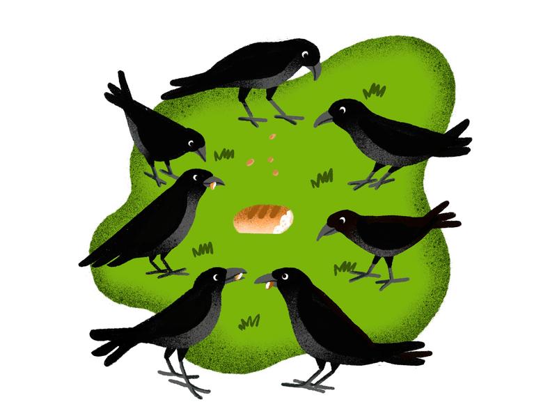 crow ui illustration design animals illustrated children art branding