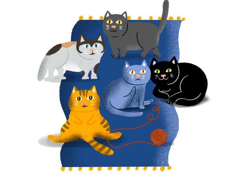 cat animation design ui animals illustrated children art branding