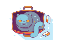 Cat & Bag