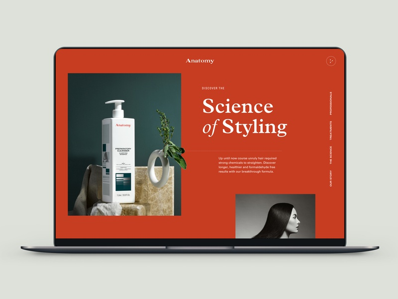 Anatomy interface salon product styling hair design ux typography ui web design website