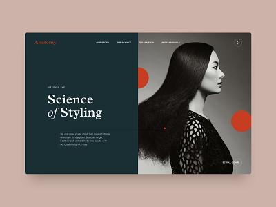 Anatomy ui design web design typography hairstyle ux digital concept web website salon styling science hair