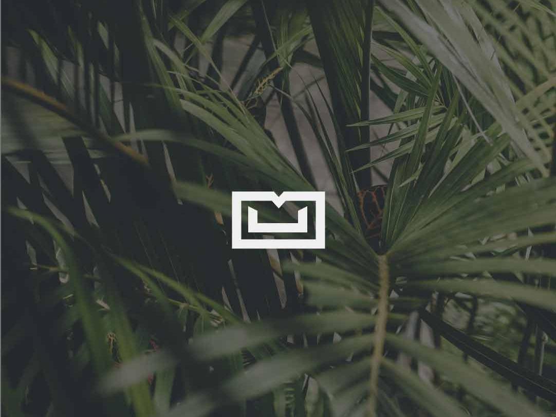 M+U Palms Monogram palmtree palms palm monogram letter mark monograms monogram design outline logolovers logolounge logolearn logolove logo design logodesign logotype logos logo monogram logo monogram