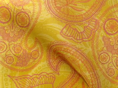 Fabric Pattern: Paisley Juice
