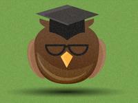 Owl Instructor