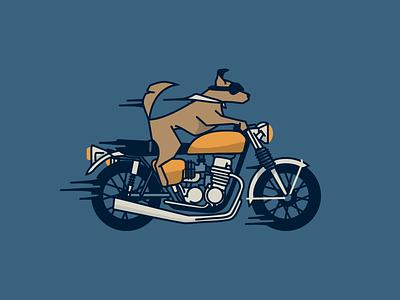 Pronto motorcycle babeswhoride dogsdogsdogs