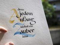 Hesse V2 calligraphy lettering handlettering kalligraphie