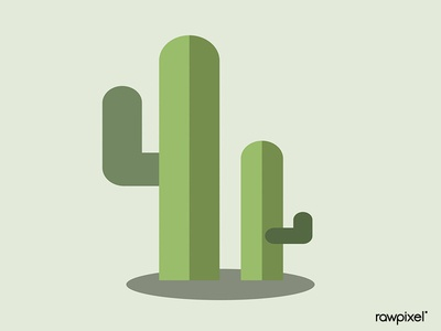 Green botany cactus design vector