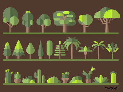 Green botany flat tree collection on a rack vector