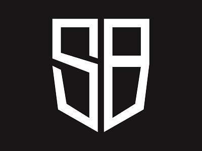 Safe Business vector logo illustration graphic design flat design branding