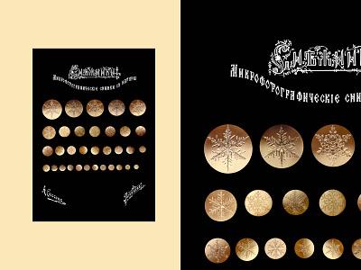 Poster Sigson's snowflakes poster illustration graphic design design