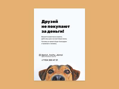Leaflets for animal shelter leaflet typography graphic design design