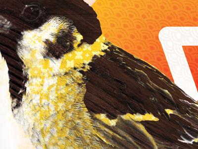 Sparrow full color bird print