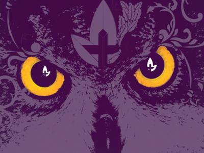 Owl owl print texture eyes