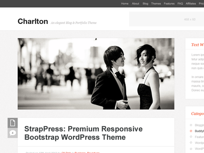 Charlton wordpress theme