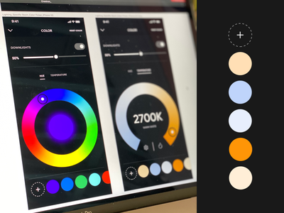 Crestron Lighting Control slider lighting smart home home automation crestron ios iphone color user experience user interface app flat ui design ux