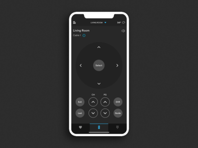 Crestron Home Automation System - Remote