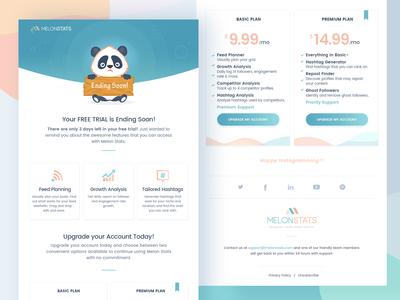 Melonstats: Email Newsletter Design