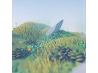 Procedurally Generated Landscape stuart wade illustration art nature octane diligence c4d render cinema 4d succulents plants environment 3d landscape illustration