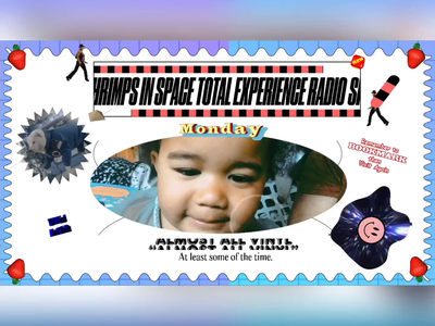 SIS001 SHRIMPS IN SPACE TOTAL EXPERIENCE RADIO VIDEO FLYER typography gif animation gif dj flyer video twitch.tv twitch