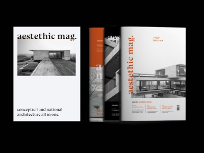 Aestethic Mag: Covers 02 logo modern logo orange cover cover design book cover photography modern architecture book type techno magazine cover black and white typography magazine editorial layout editorial design editorial design