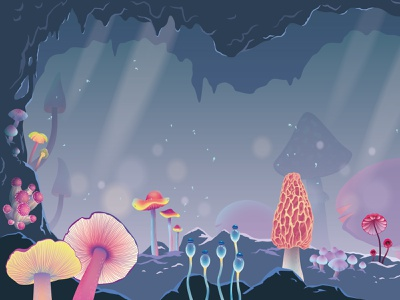 Different types of mushrooms, part 1 landscape