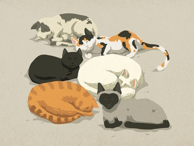 Sleeping cats vector animal cute cats sleep art illustration