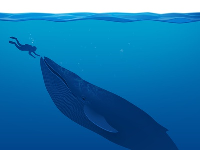 The Whale blue underwater whale sea animal vector illustration