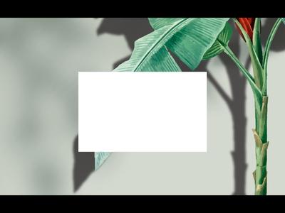 Decor: Summer Camp Branding Project vector typography branding logo illustration realestate photoshop motion design animation