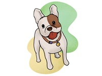 Illustration - puppy