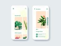 Plants care - mobile app
