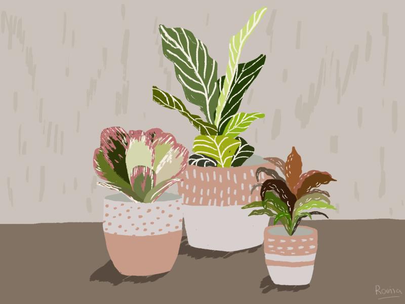 Plants #1