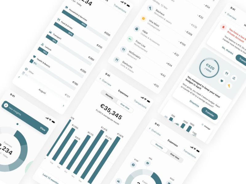 Tink SDK customization product design ios app design expenses finance fintech sdk