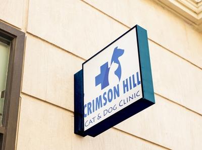 Crimson Hill Mockup2