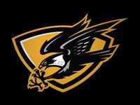 Eiker Falcons