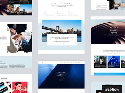 Proteus Template template business cms webflow