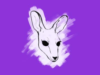 Kangaroo affinity designer cute kangaroo illustration sketch