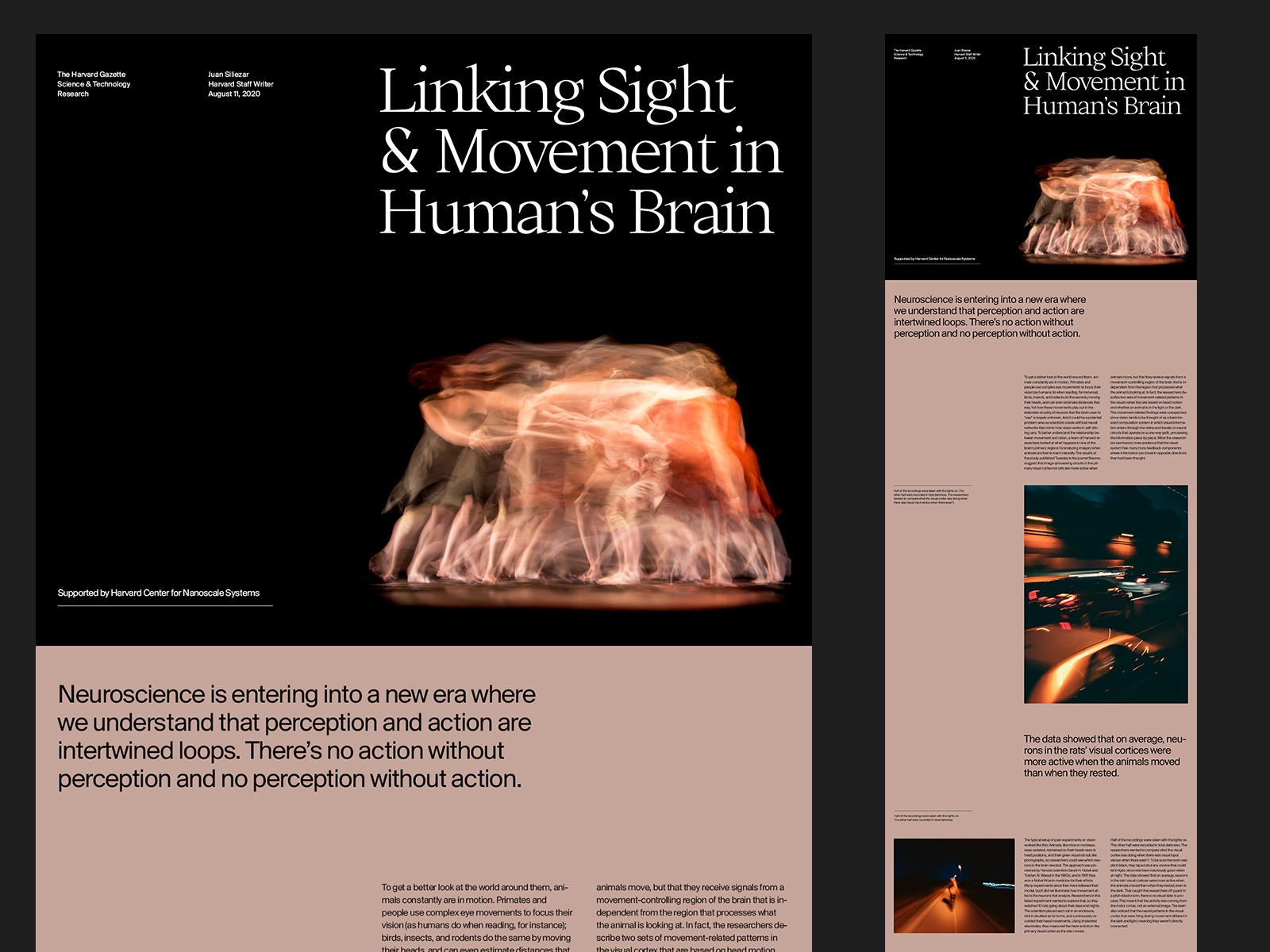 Science Article – Layout