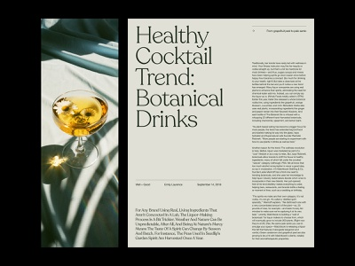 Cocktail Guide – Layout presentation design art direction web ux layout minimal typography