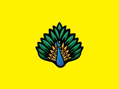Peacock Logo Concept