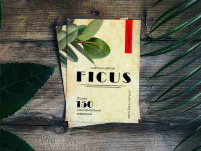 A5 flyer format for the Ficus flower shop