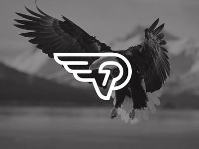 Instituto Posso Voar    Can Fly Institute eagle social entrepreneurship branding design logo design identidade visual
