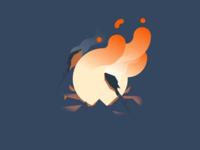 Campfire Grillin