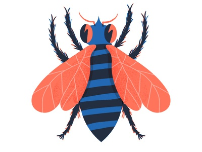Buzz Buzz buzz bee fly insect red blue rad