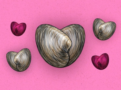 a story of love, romance, and...clams illustration drawing seafood valentine valentines day clams hearts love food tasting table